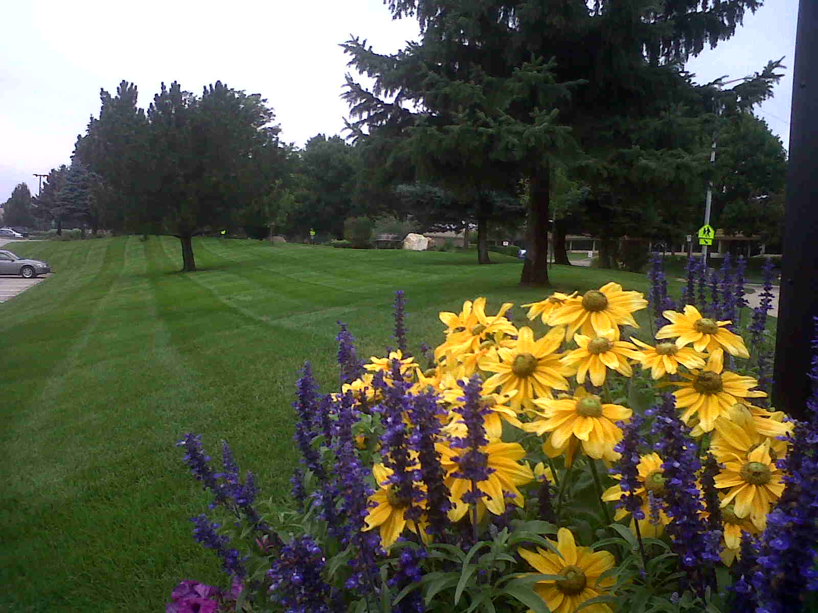 Fort Collins, CO Landscape Contractors Services