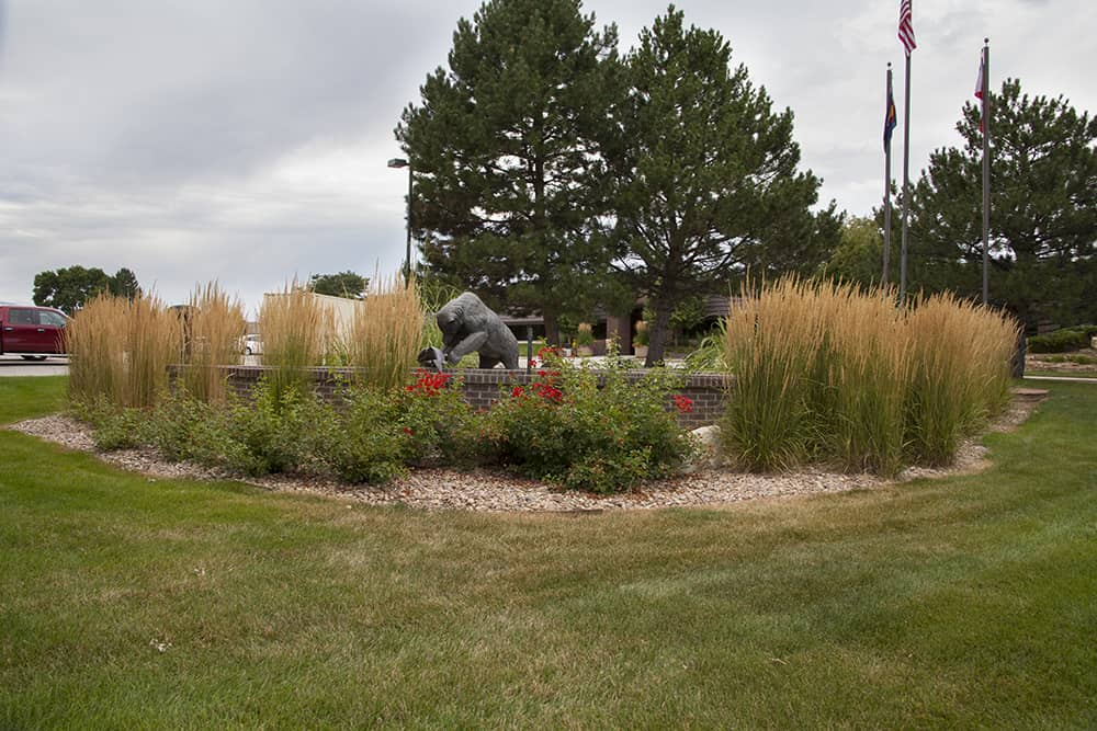 Boulder landscape contractors Colorado