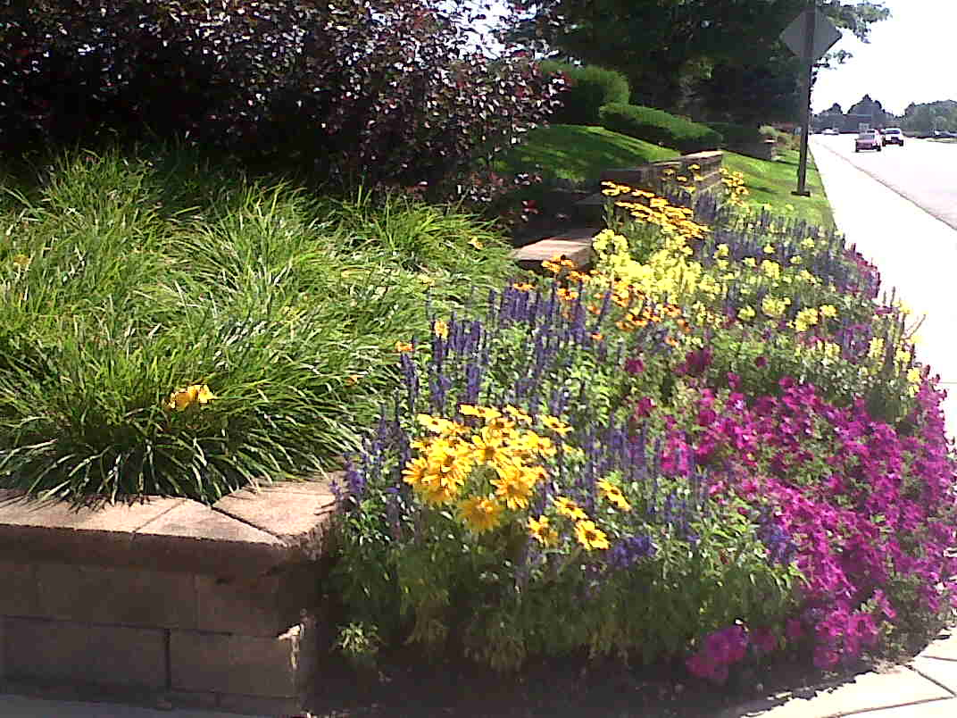 landscape designer in Denver, Colorado
