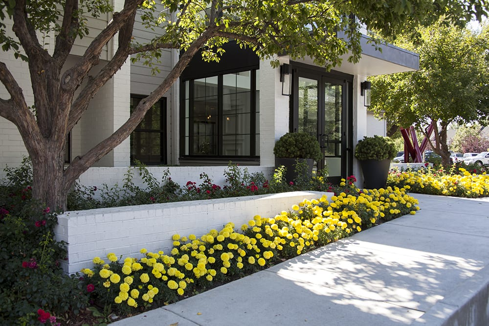 Denver, CO commercial landscaping