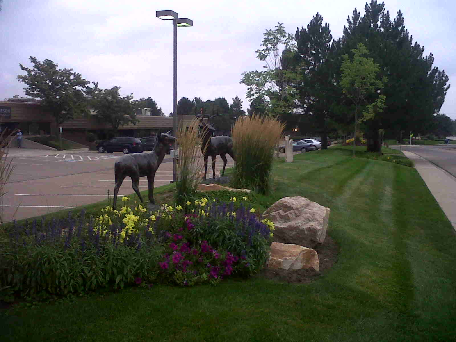 Castle Rock, Colorado Landscaping Services